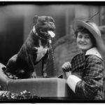 Фото с выставки собак 1915 года в США