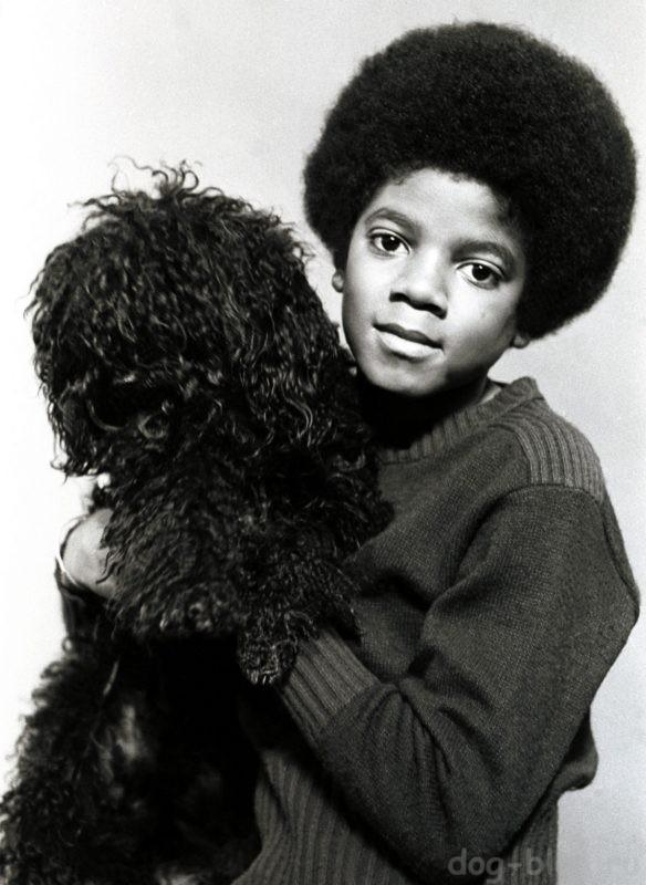 Майкл Джексон со своей собакой