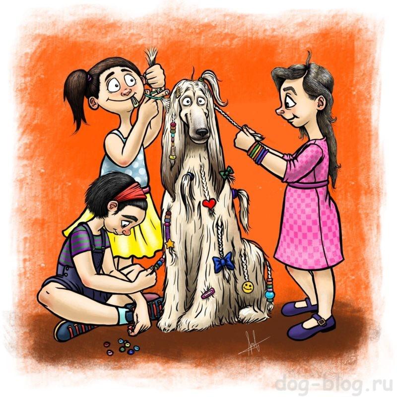 проблемные породы собак