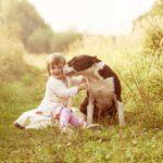 5 правил общения ребёнка с чужой собакой