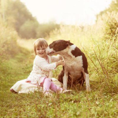 ребёнок и чужая собака