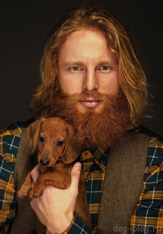 что опаснее - борода или собака