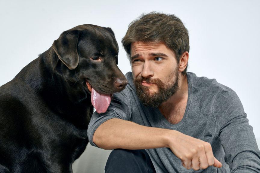 борода или собачья шерсть