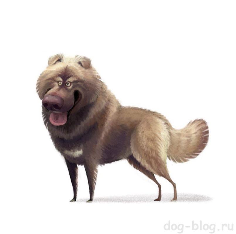 Шарж собаки