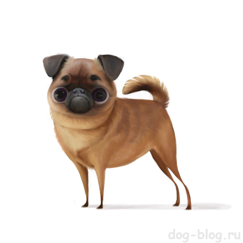 Собака карикатура
