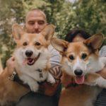 История Егора, который боялся собак