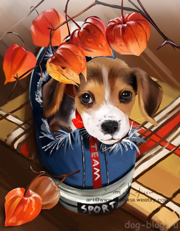 Стихи про собак для детей